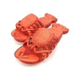 Тапочки-шлепки «Ракоходы»